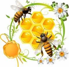 "Кращих зображень дошки ""нуш"": 223 Graphics, Friends і Beekeeping"