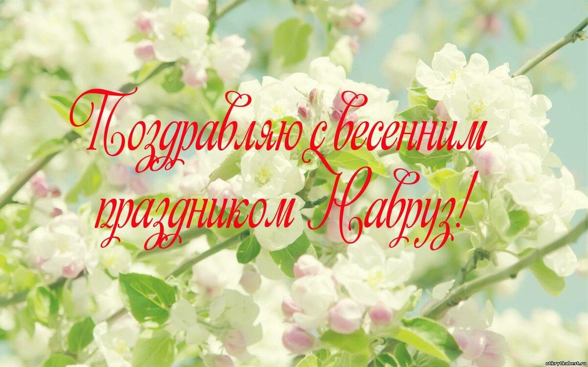 поздравление с праздником навруз открытки проект готов