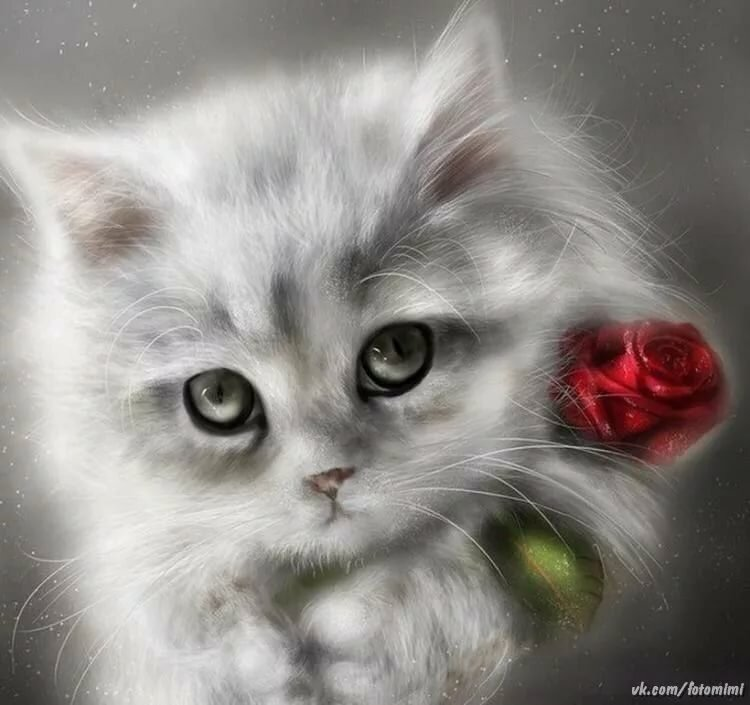 Картинки любовь с кошками и надписями