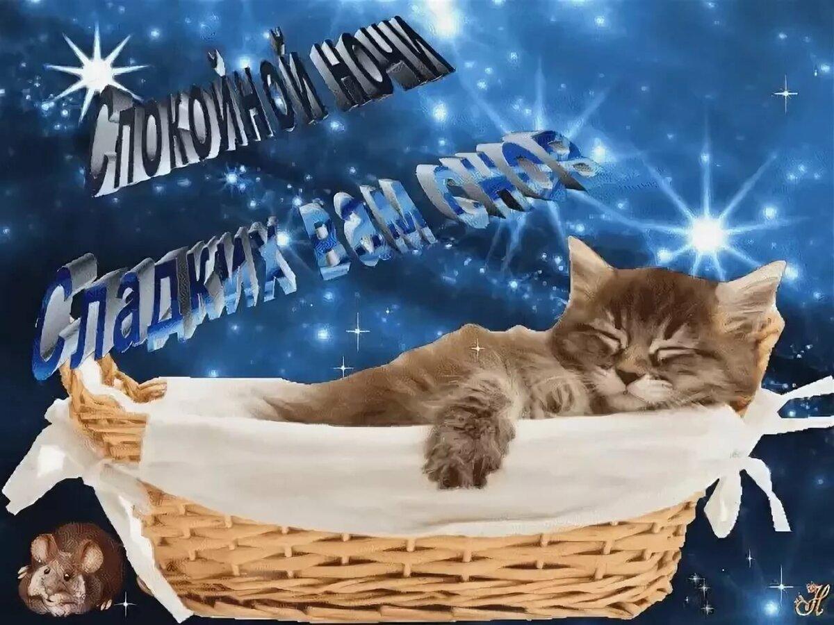 Сладких зимних снов открытка