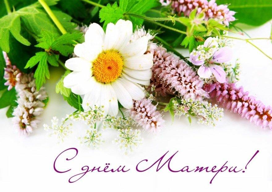 Картинки цветы на день матери красивые