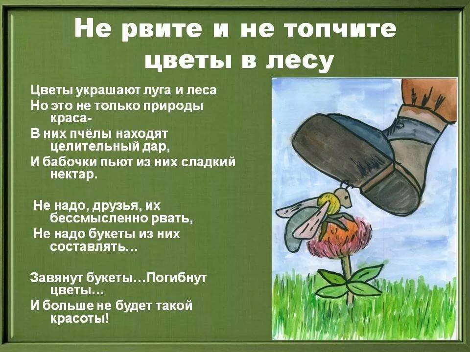стихи картинки защитить растения полковника