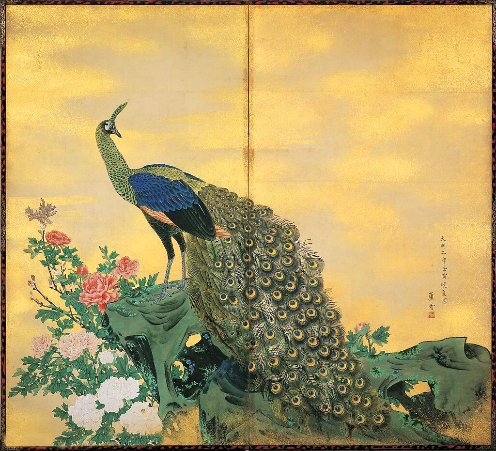 газетных красивые картинки с павлинами и попугаями приводит
