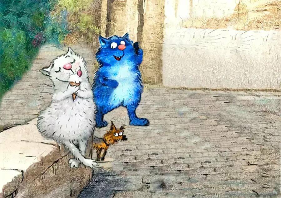 притягательная гифы картинки синие коты что такие публикации