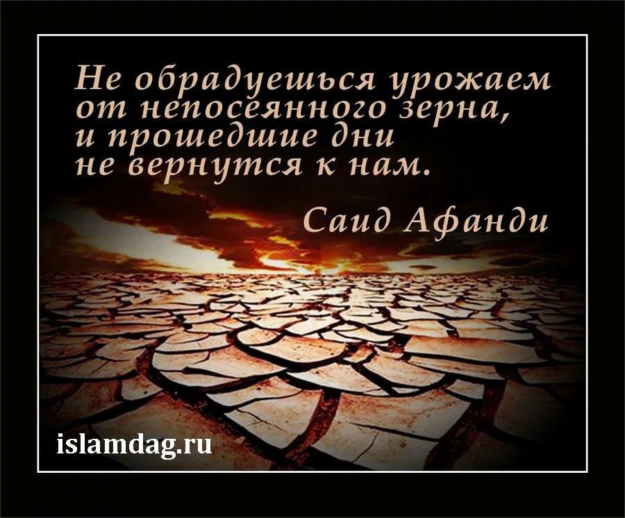 Картинки исламский высказыванием