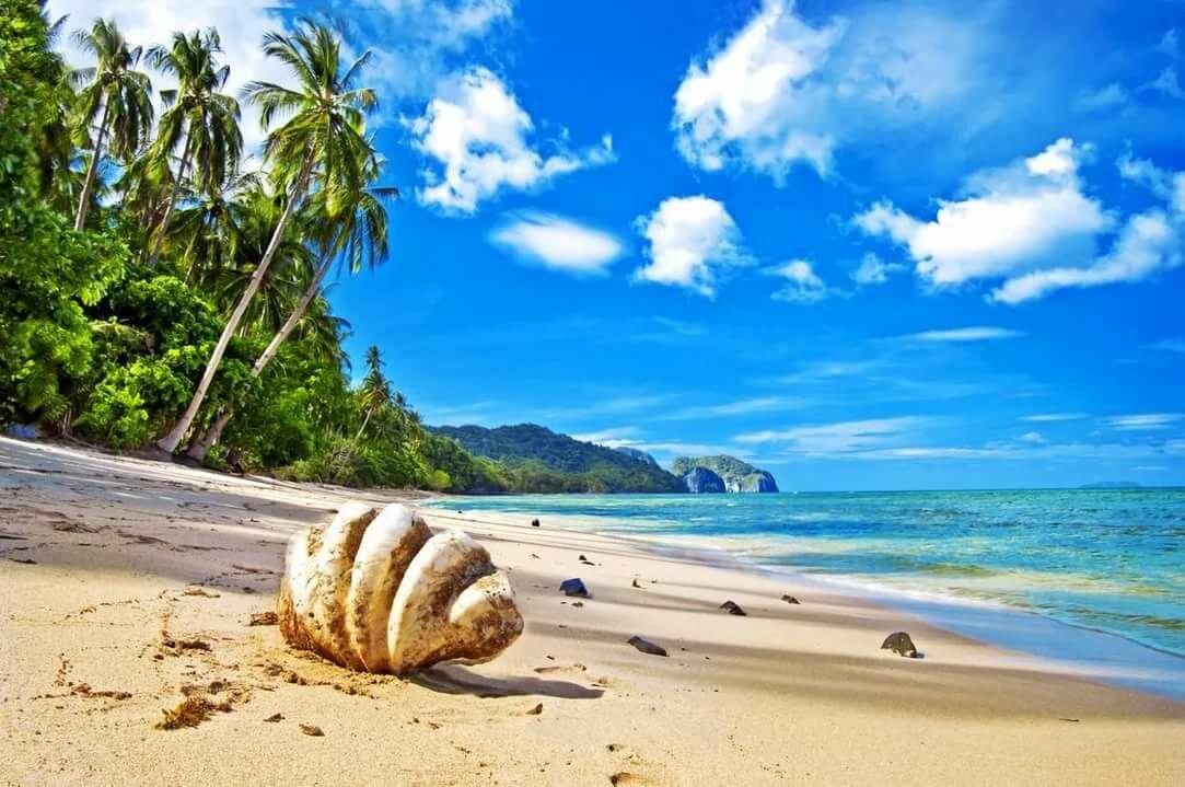 Открытка обои, картинки пляж и море красивые