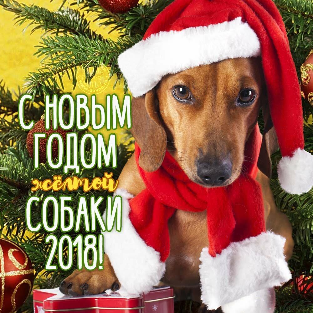 Картинки, новогодние картинки открытки 2018 года