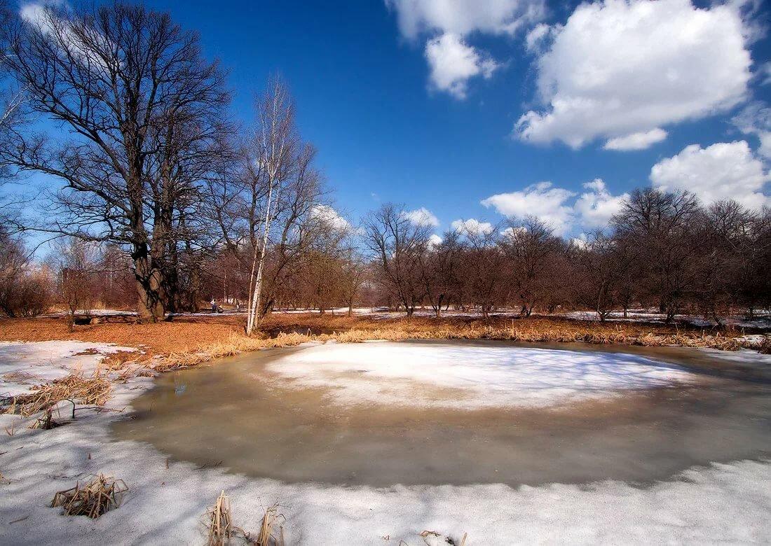 такой фото тающий снег ранняя весна пуделя украшена