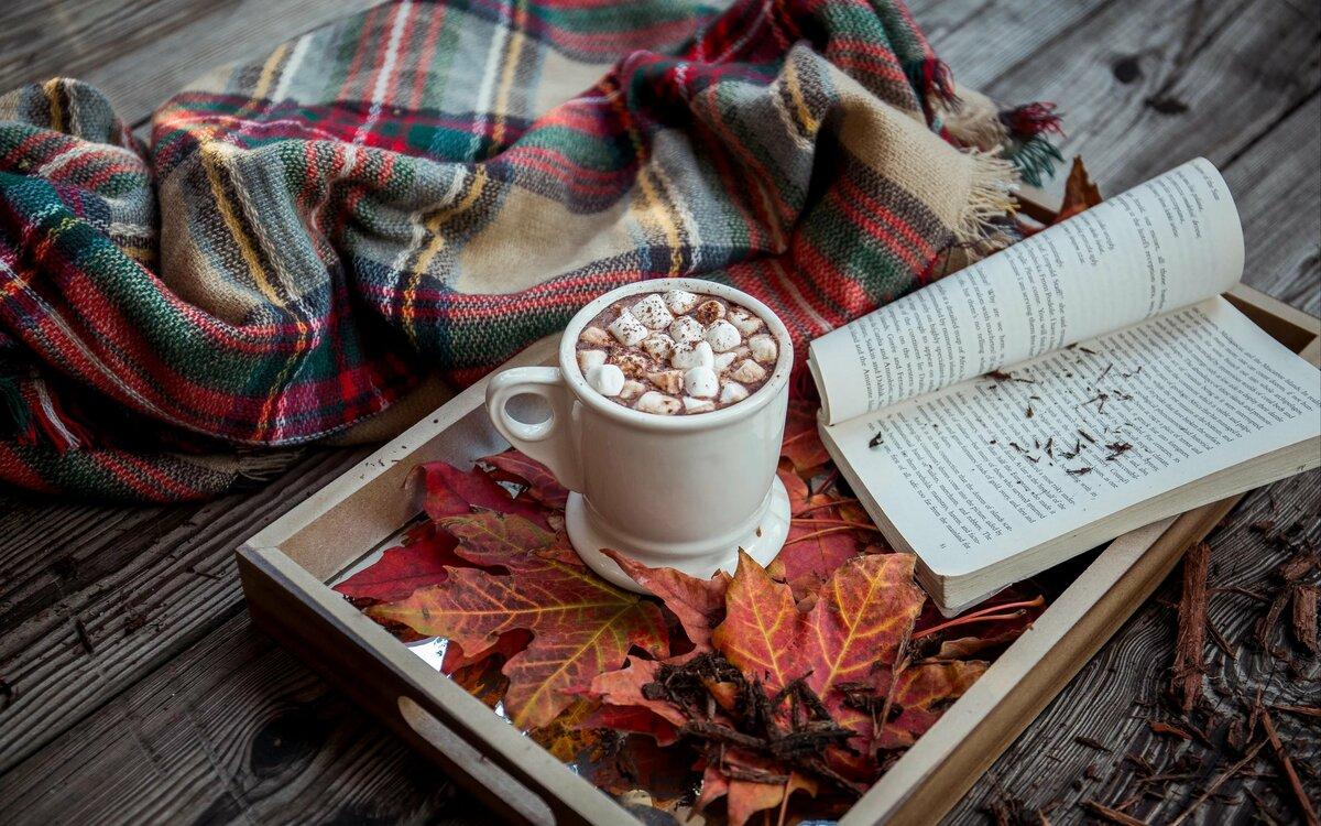 картинки осень теплый плед пользуются немалым