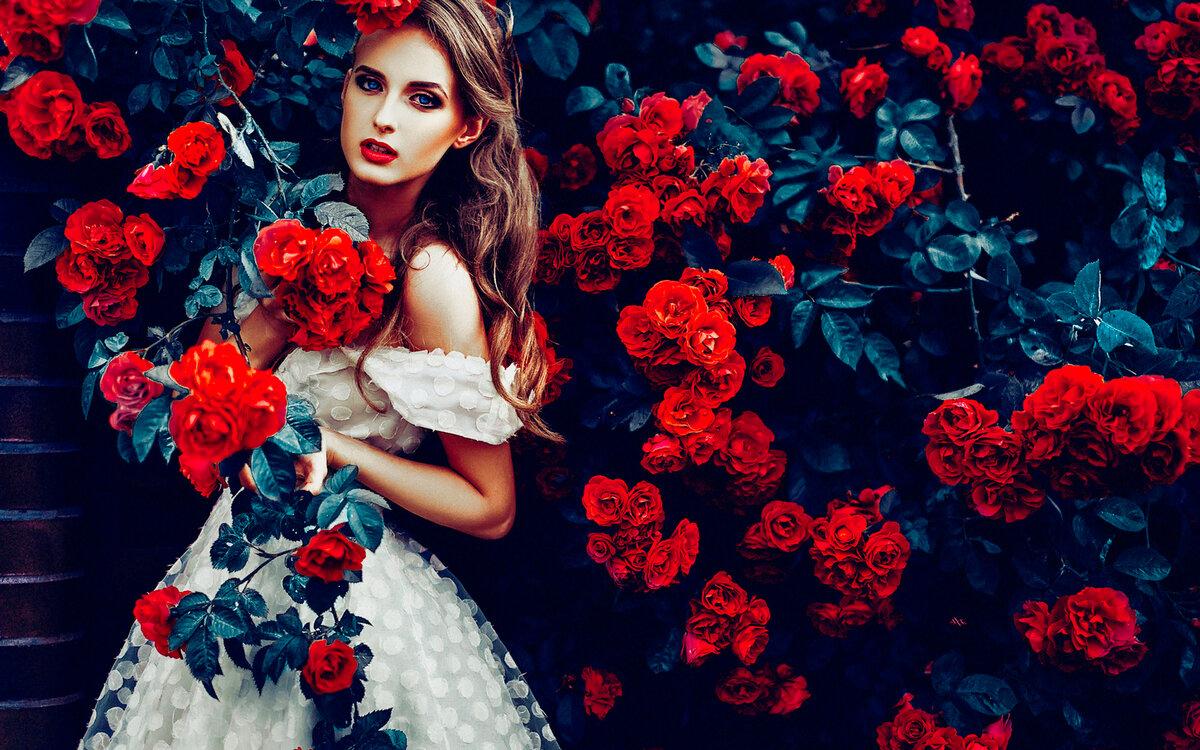 Веселые картинки с розами