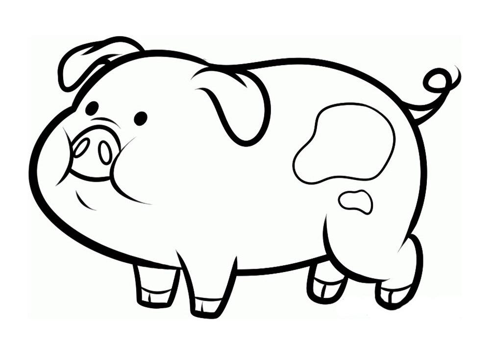Смешная свинка картинка на окно, картинки