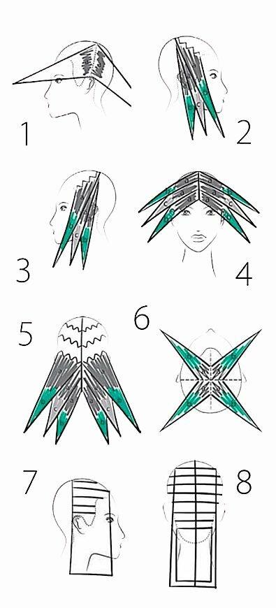 схема окрашивания волос картинки она так