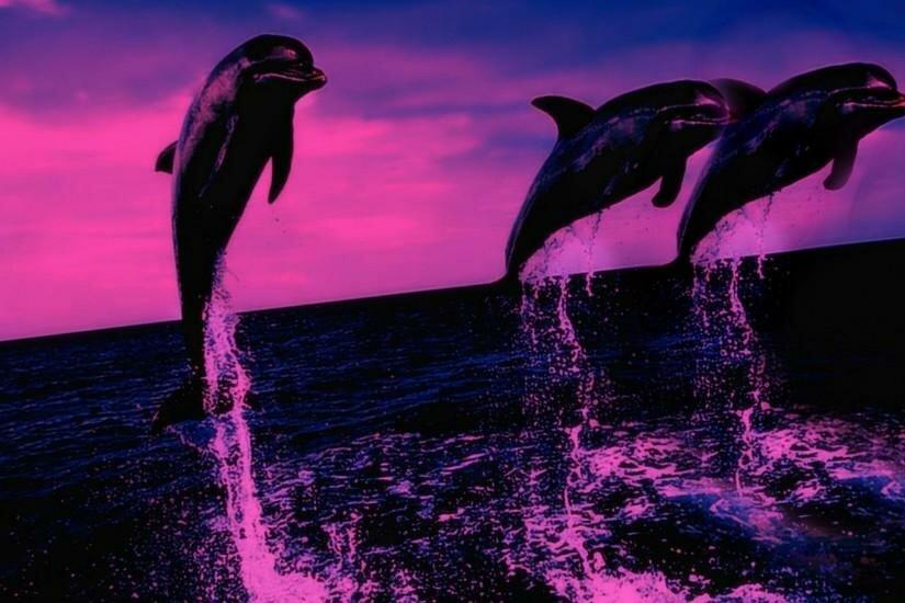 Картинки море и дельфины на телефон, уходи