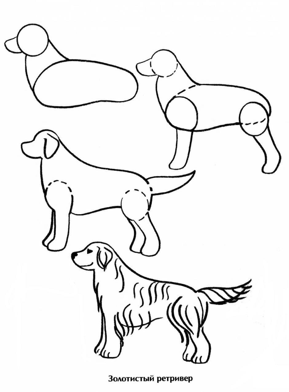 лоскутков пошаговые рисунки породистых собак титковой