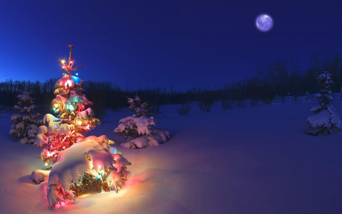 Картинки елка новогодняя на рабочий, аплодисменты