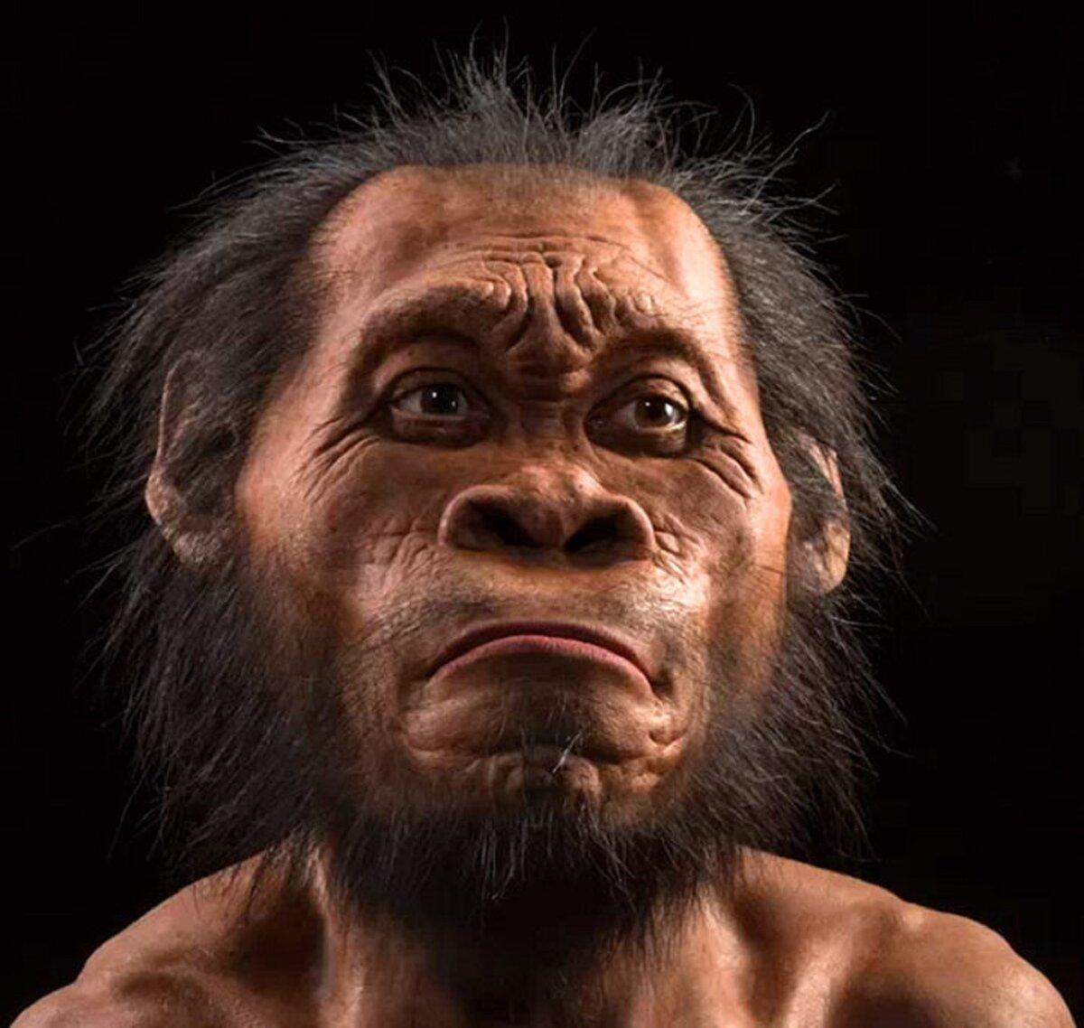 Неандертальцы картинки смешные