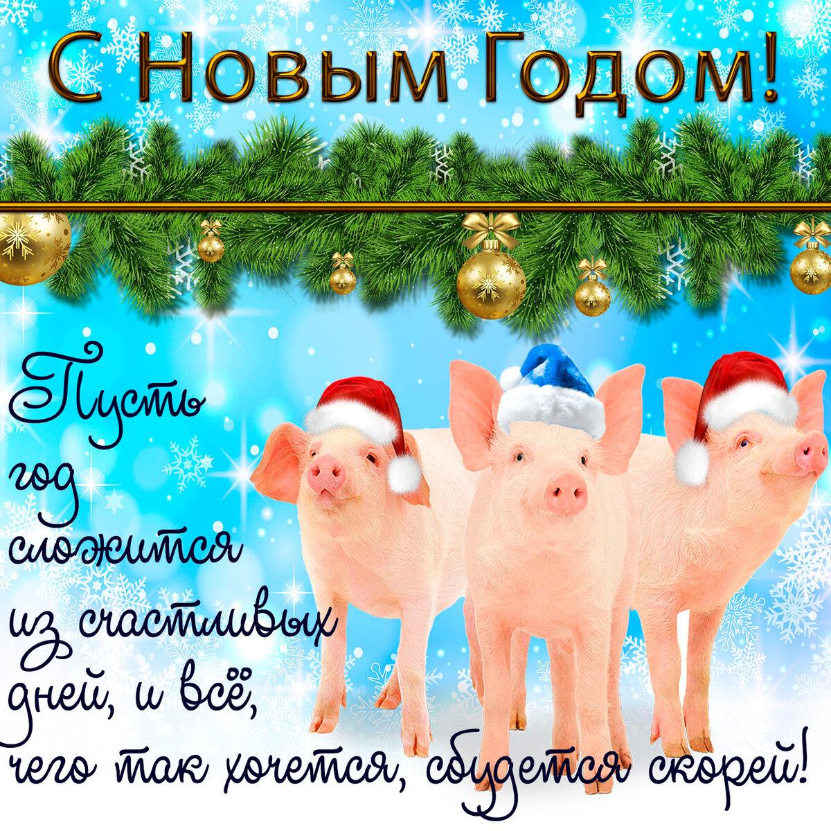 самые прикольные новогодние поздравления с годом свиньи кое-кто