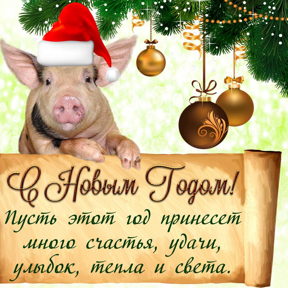 Картинки с пожеланиями к новому году 2019 свиньи прикольные, снег