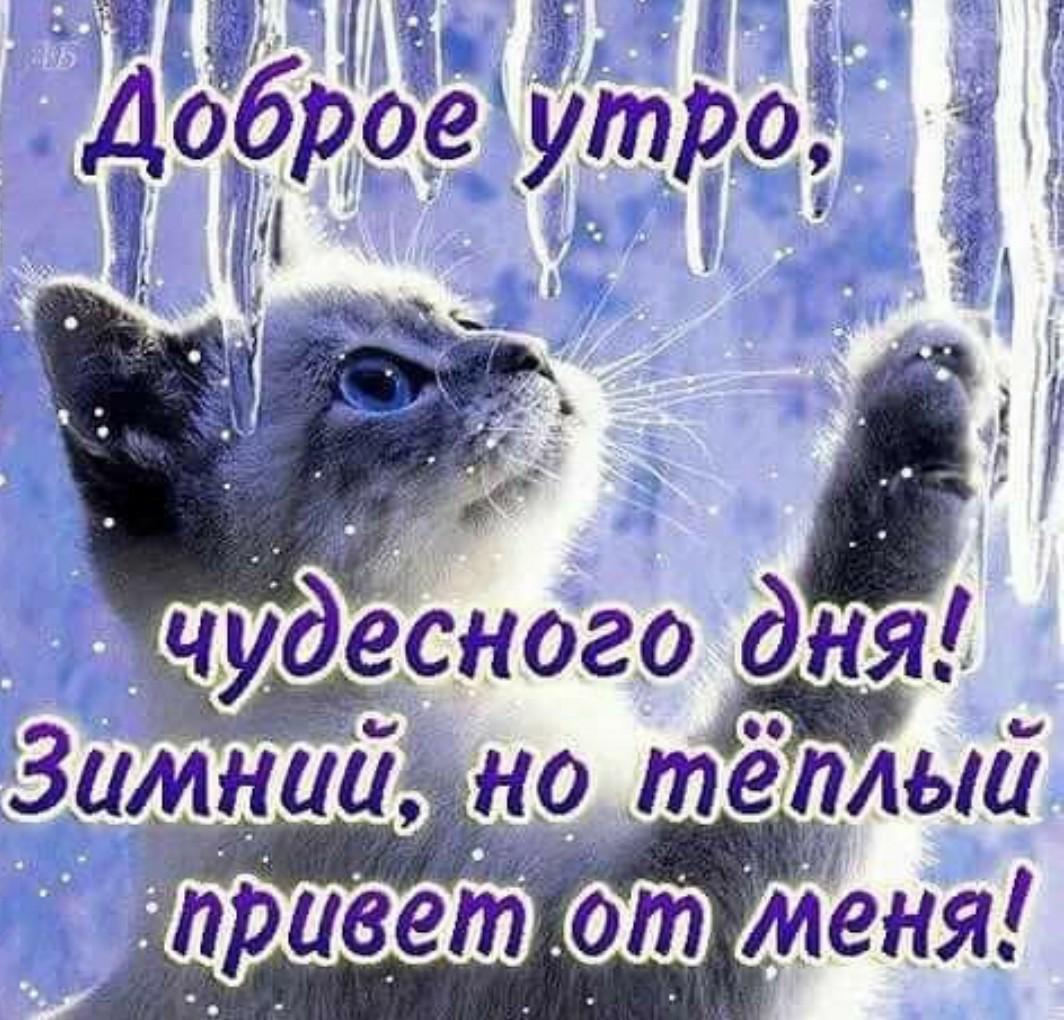 поздравление доброе утро в картинках зимой считать