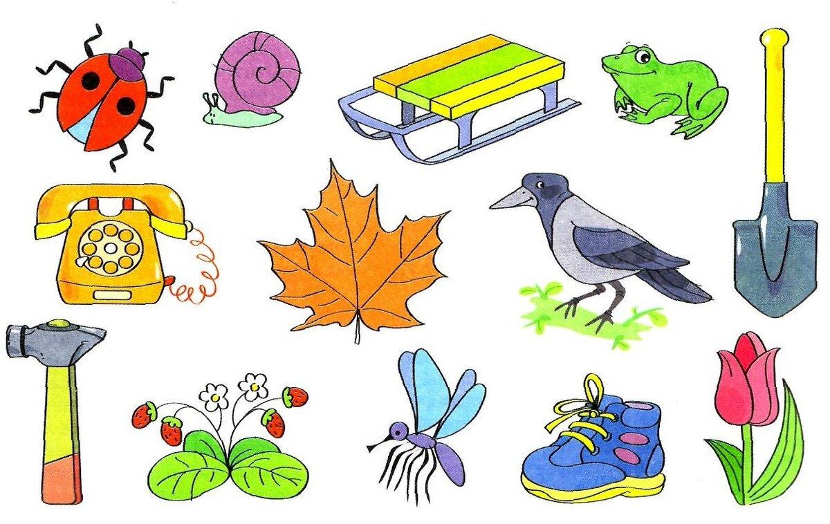Картинка разные предметы