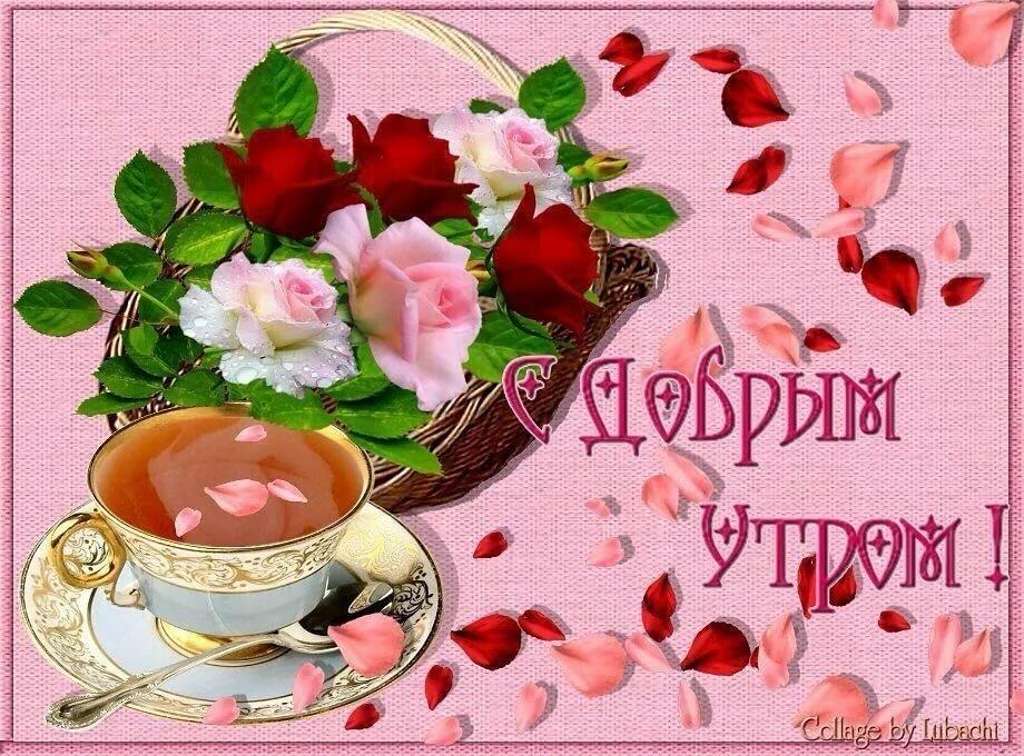 фотографии открытки с поздравлением доброе утро дорогая еда только полезней