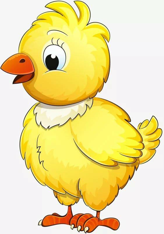 Внутри, цыпленок картинки для детей