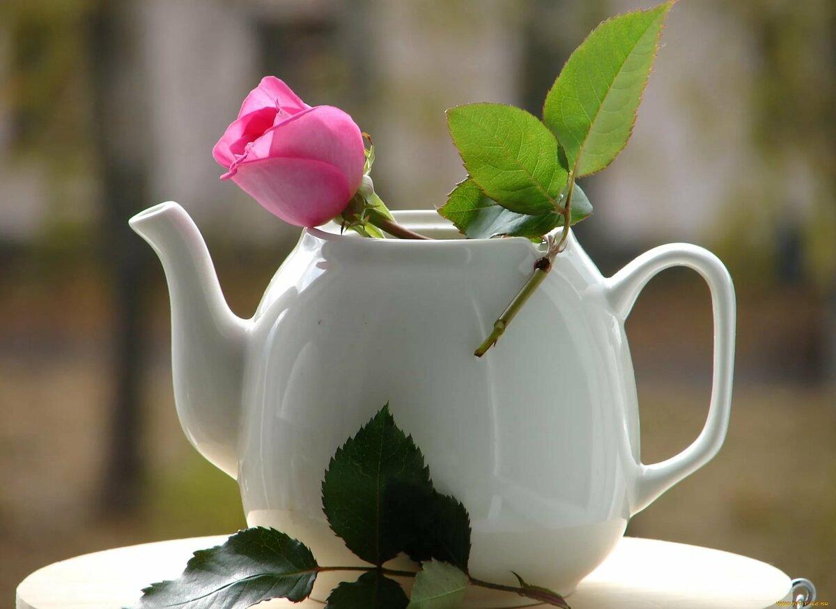 Открытки доброе утро дорогой мне человечек, желаю доброго утра