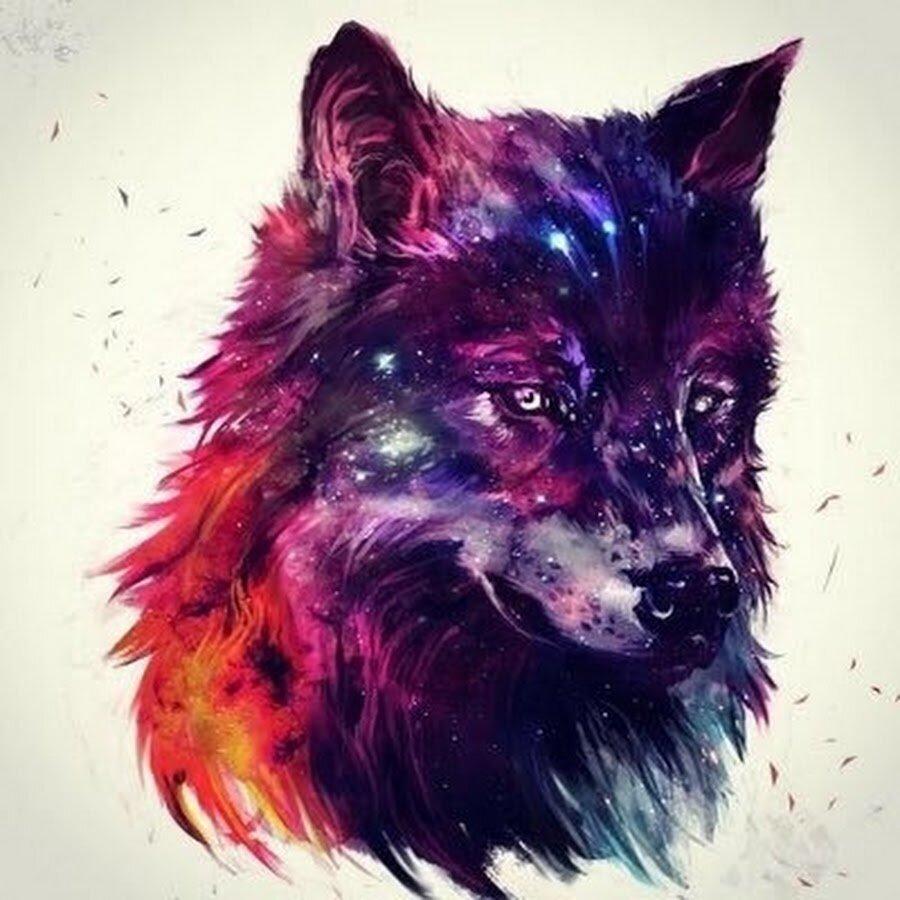 Гифки, рисунки крутые животные