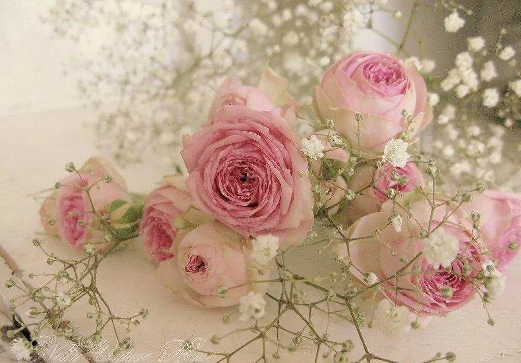 открытка с нежно розовыми цветами признался