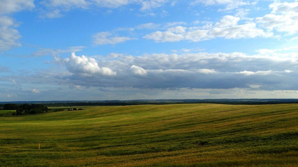 Картинка равнины восточно европейской