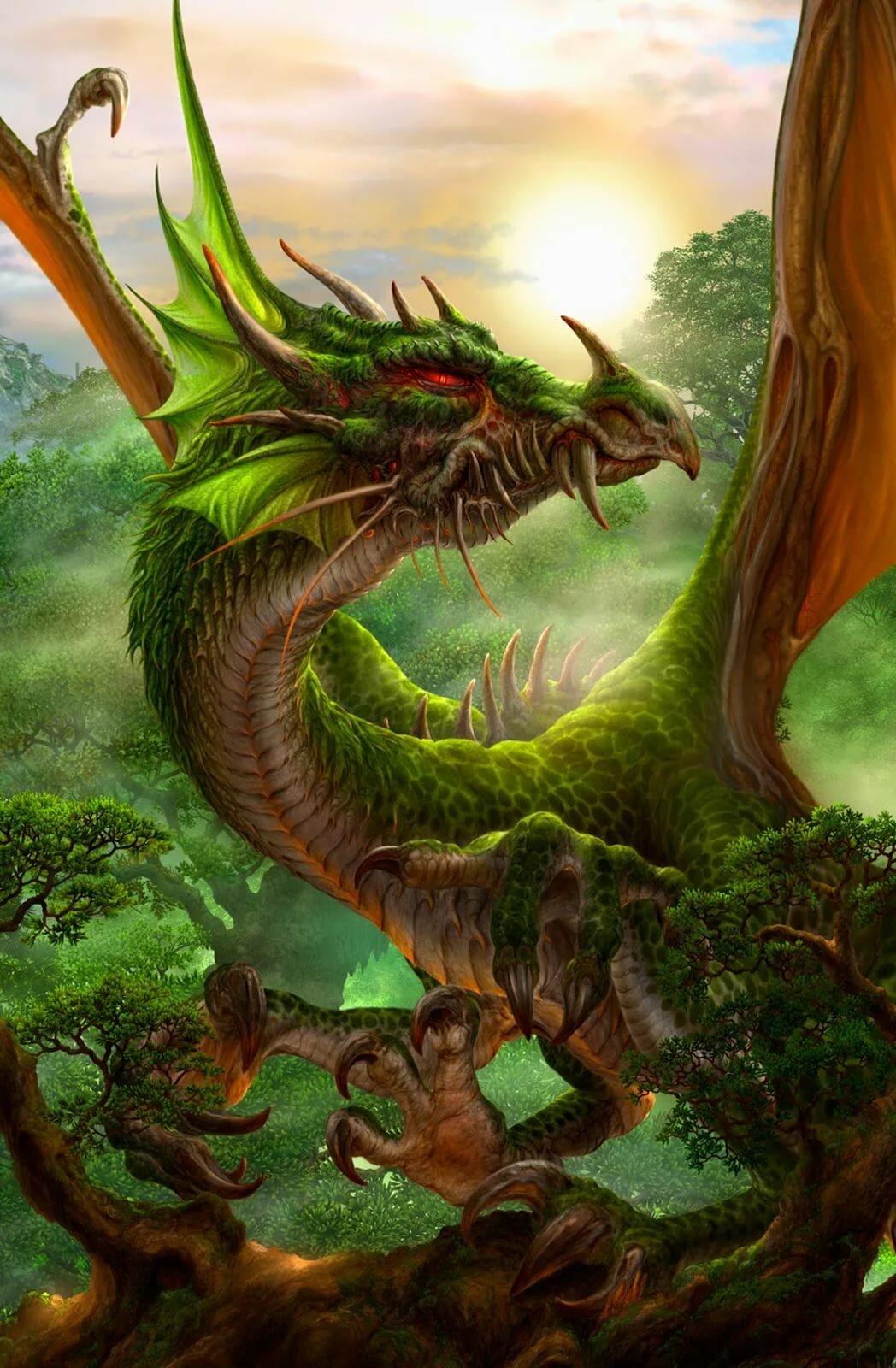 фото земляного дракона минуты жизни встретил