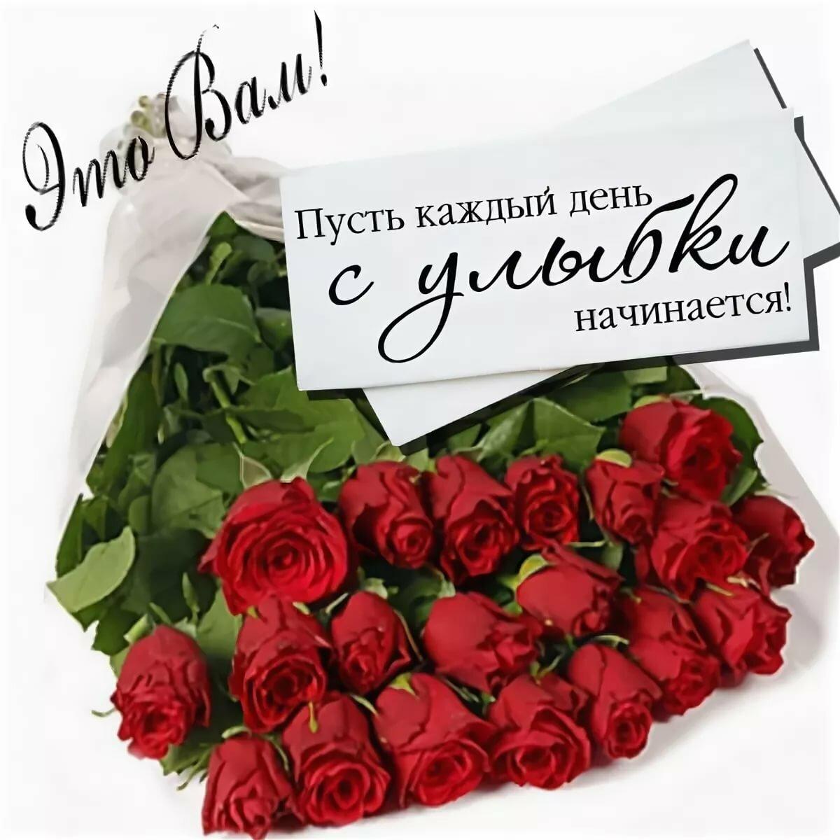 Днем рождения, открытки с розой цветами с поздравлениями на каждый день