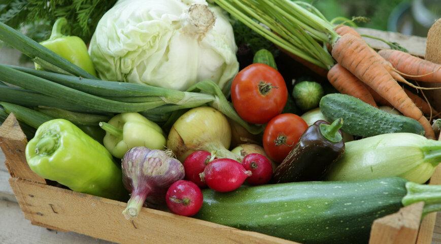 Смотреть Овощные Диеты.