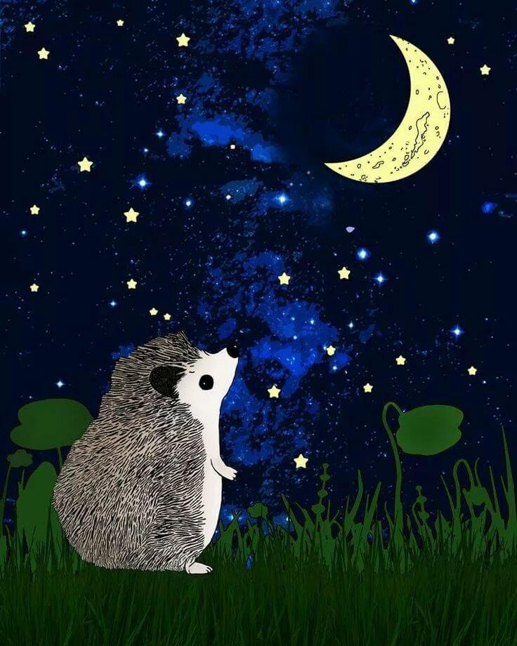 Доброй ночи картинки с ежиком красивые необычные