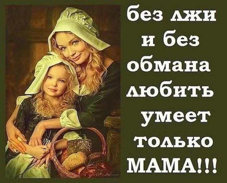 Материнская любовь картинки с надписями, фото котят смешные