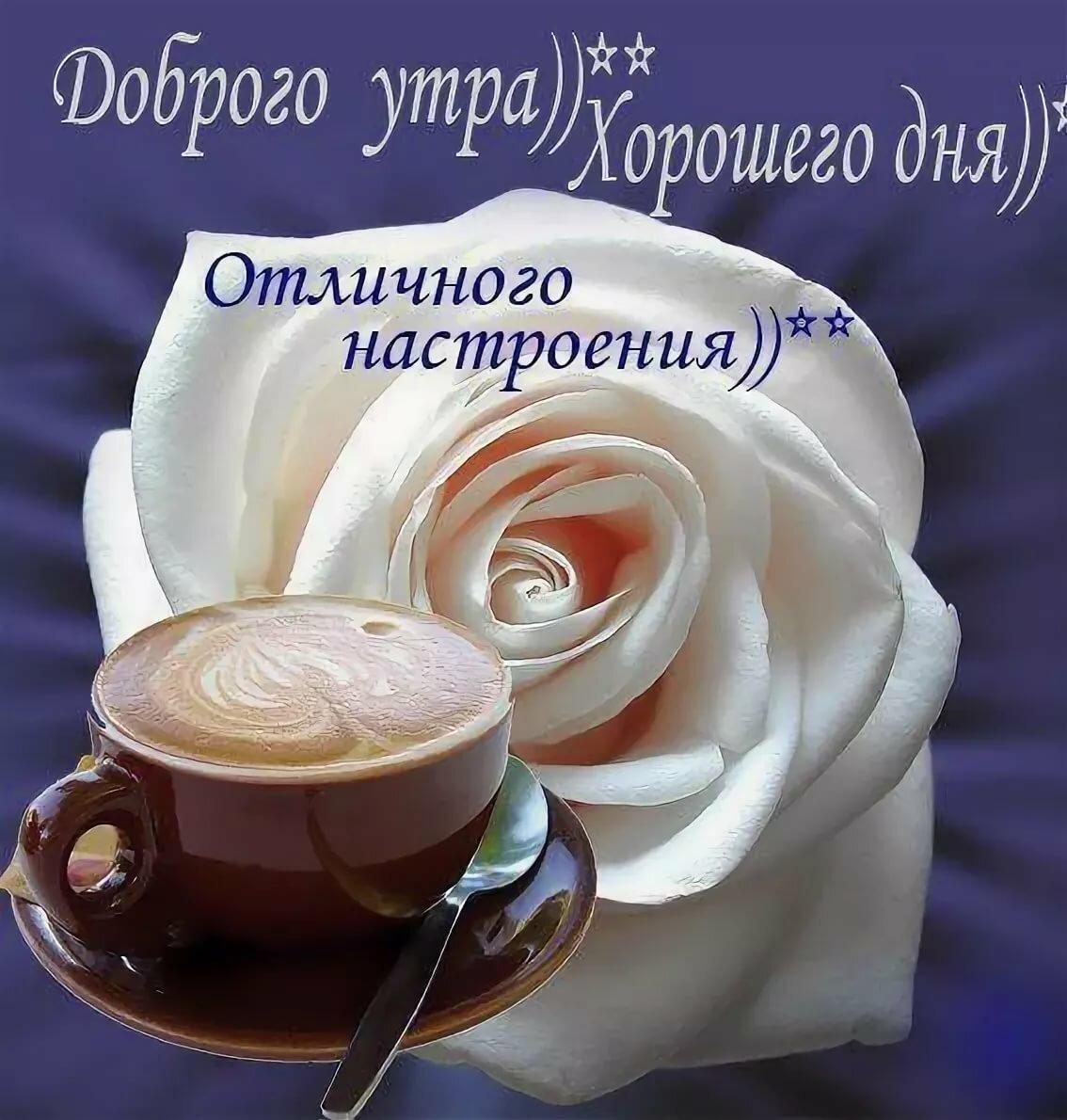 Приколы открытки с добрым утром и хорошим настроением, мудрые слова завтра