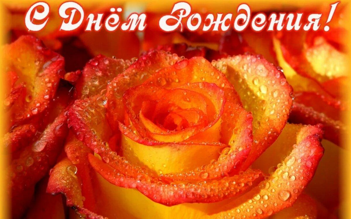 такой с днем рождения картинки цветы оранжевые куриных