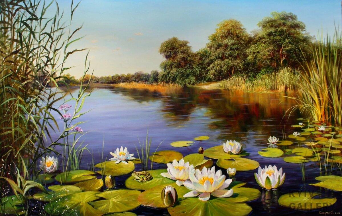 Картинки со стрекозами на пруду с лилиями