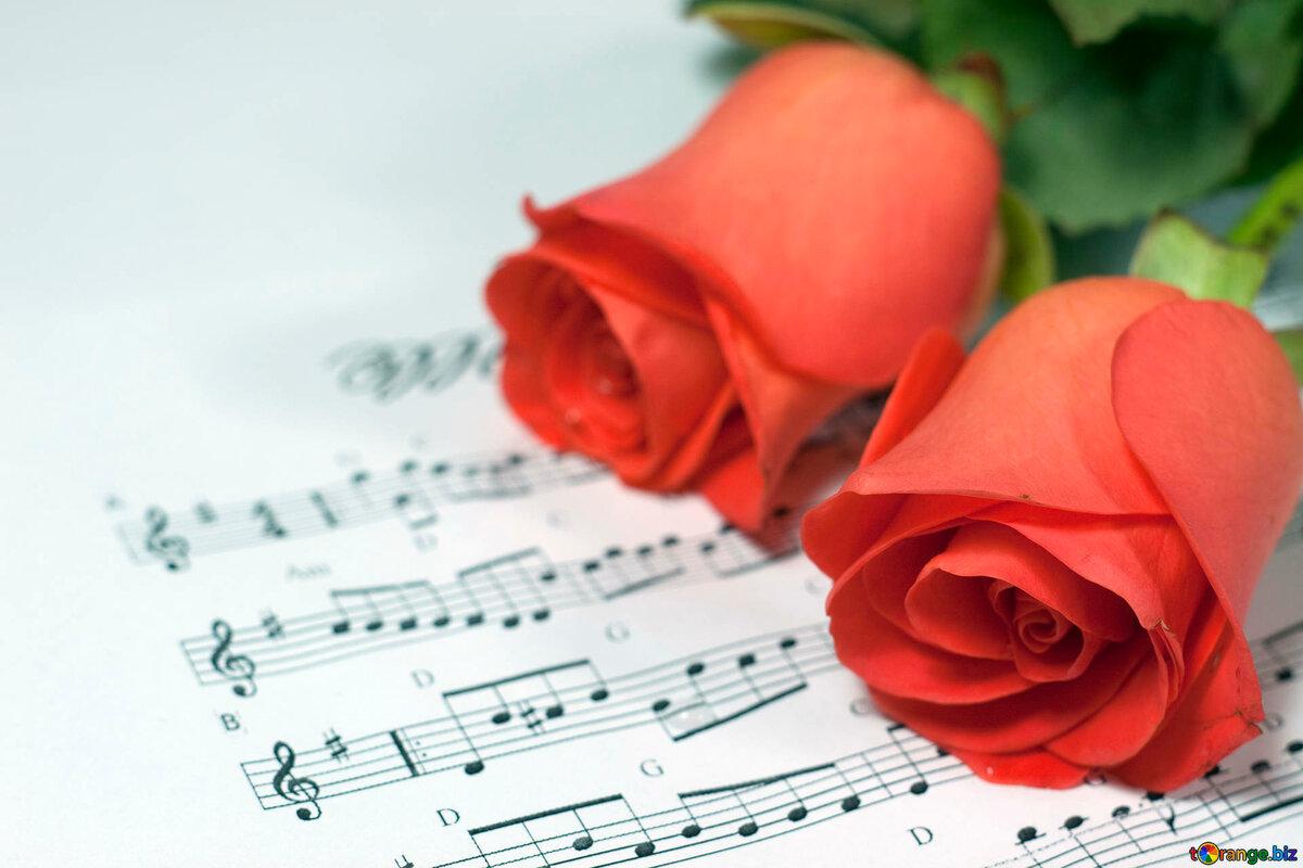 Нарисовать красивую, курсы по музыкальным открытками
