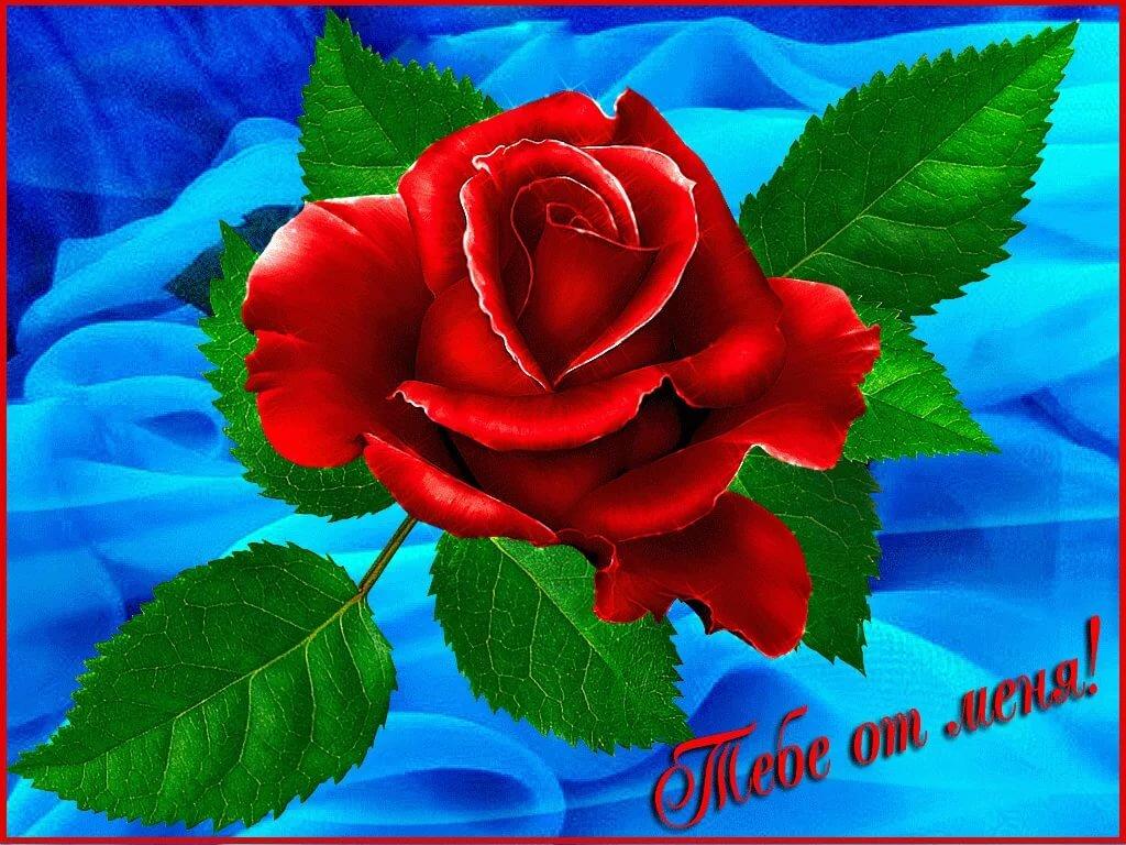 Открытки анимашки цветы для тебя