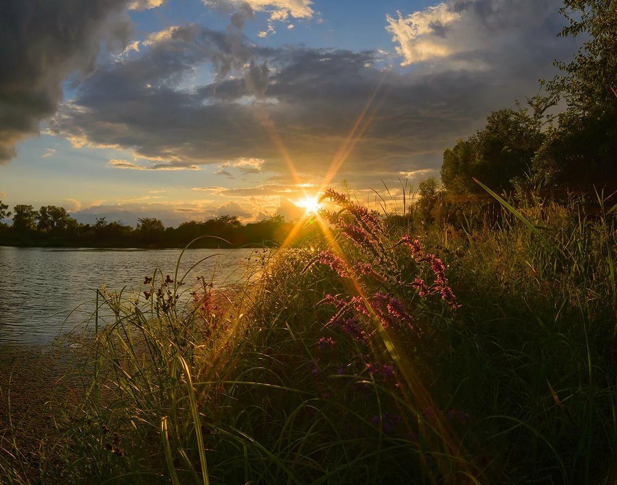 Теплый летний вечер картинки