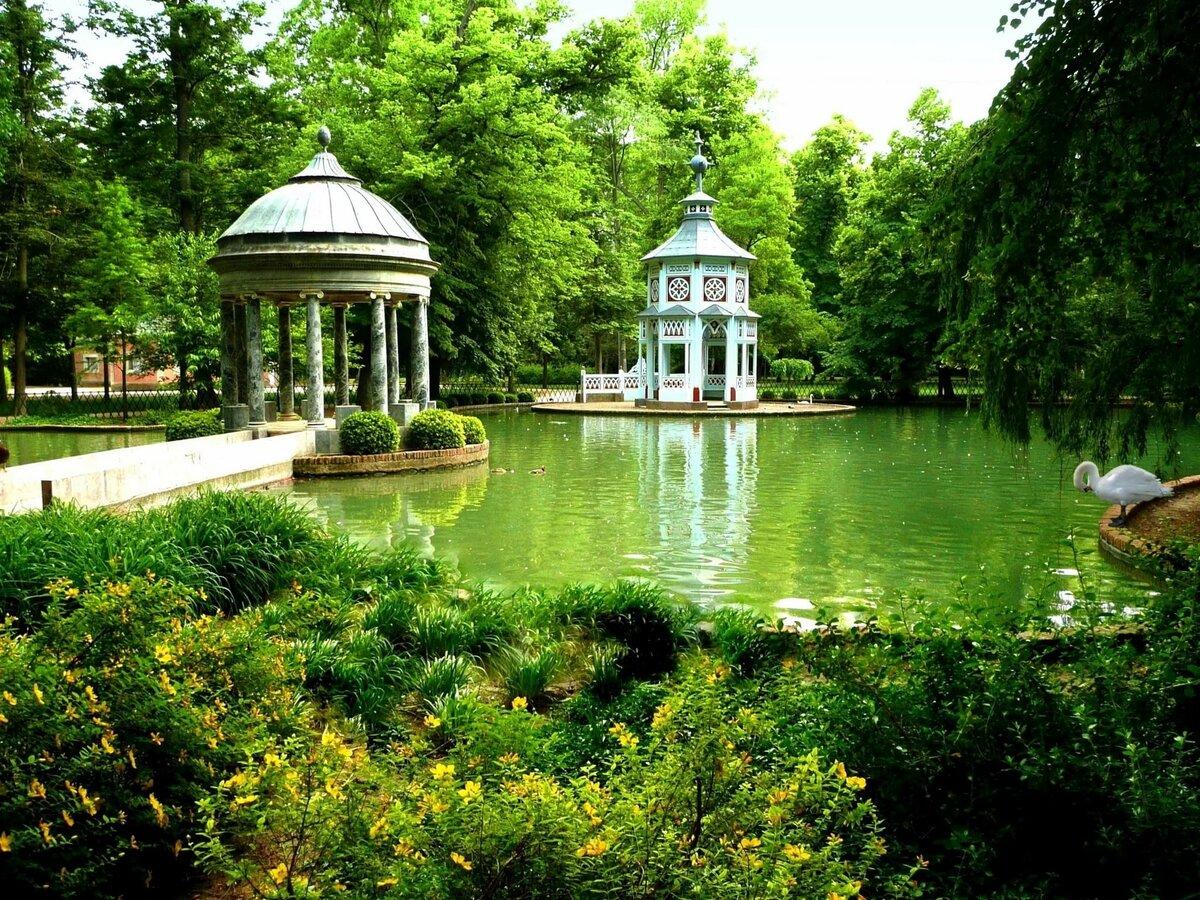 Красивый парк с озером картинка