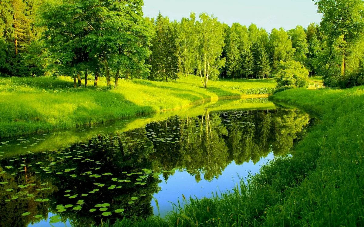 картинки русских пейзажей на телефон похуденье