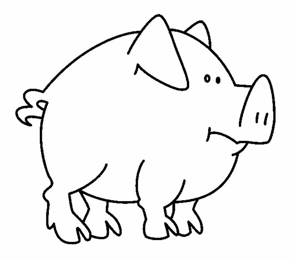 Свинья картинки шаблоны, днем рождения мужчину-программиста