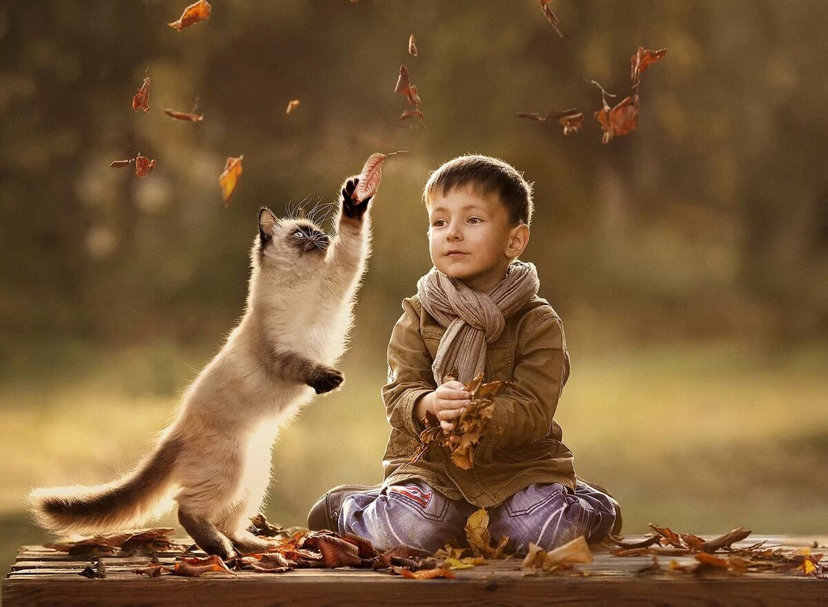 Красивые картинки про животных и детей