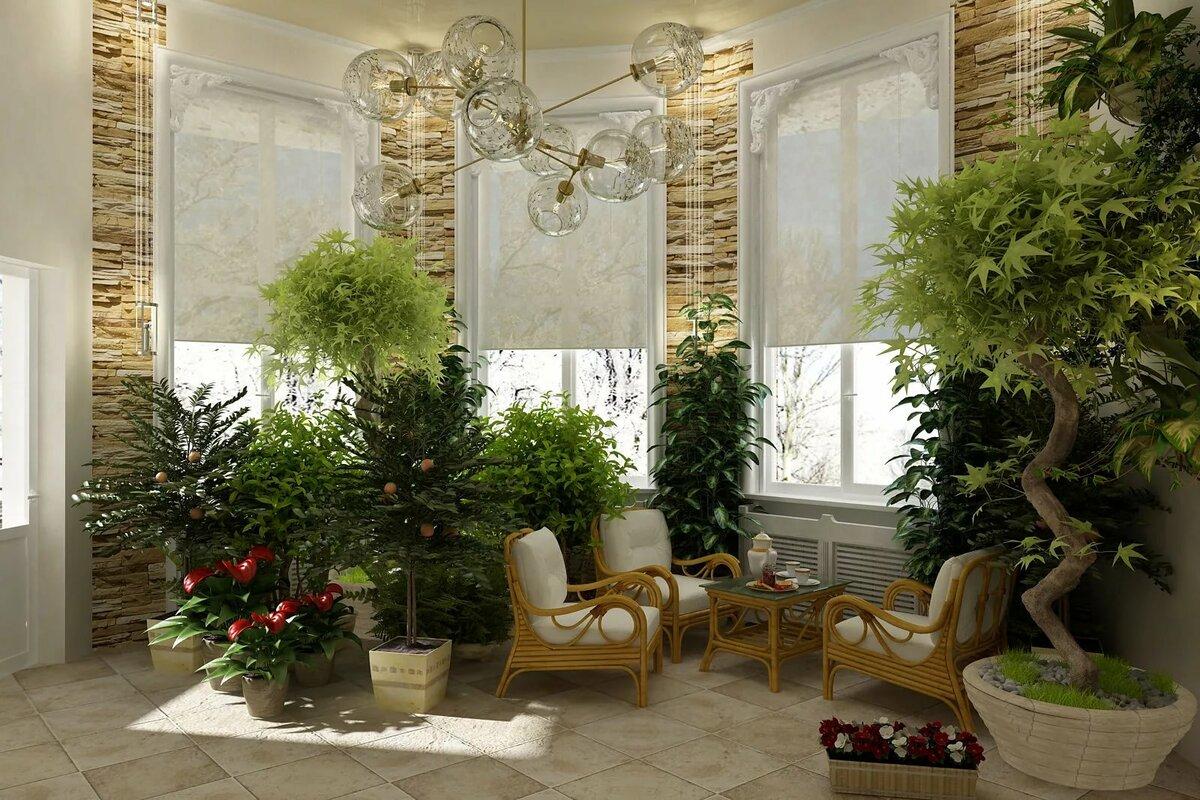 Открытки, картинки зимний сад камень дерево