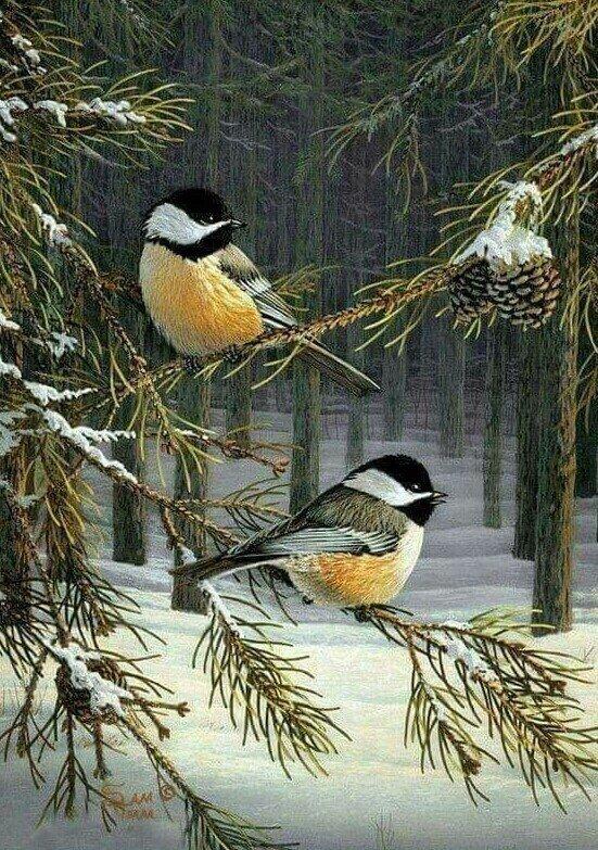 Пуха пера, зимующие птицы анимационные картинки