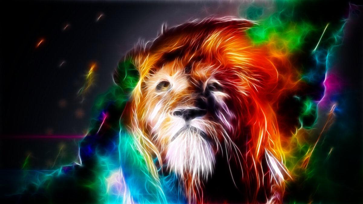 Trippy Lion Wallpaper Wallpapersafari Card From User