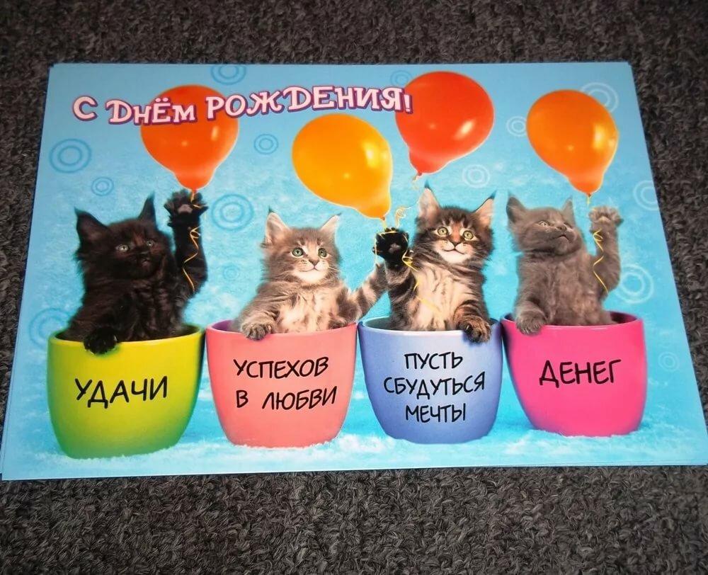 Картинки с кошками с днем рождения прикольные