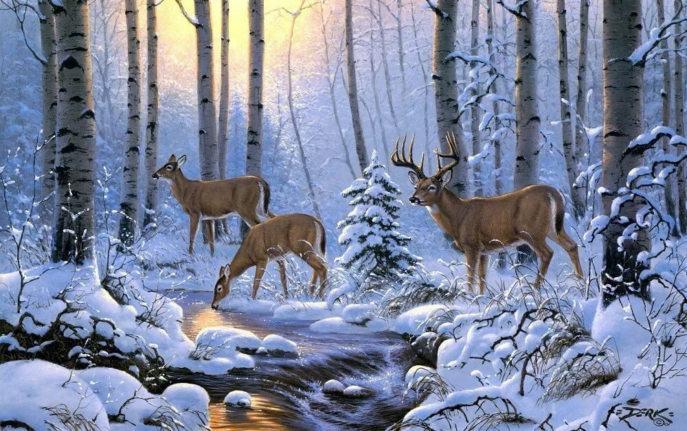 Музыкальные открытки с природой и животными красивые